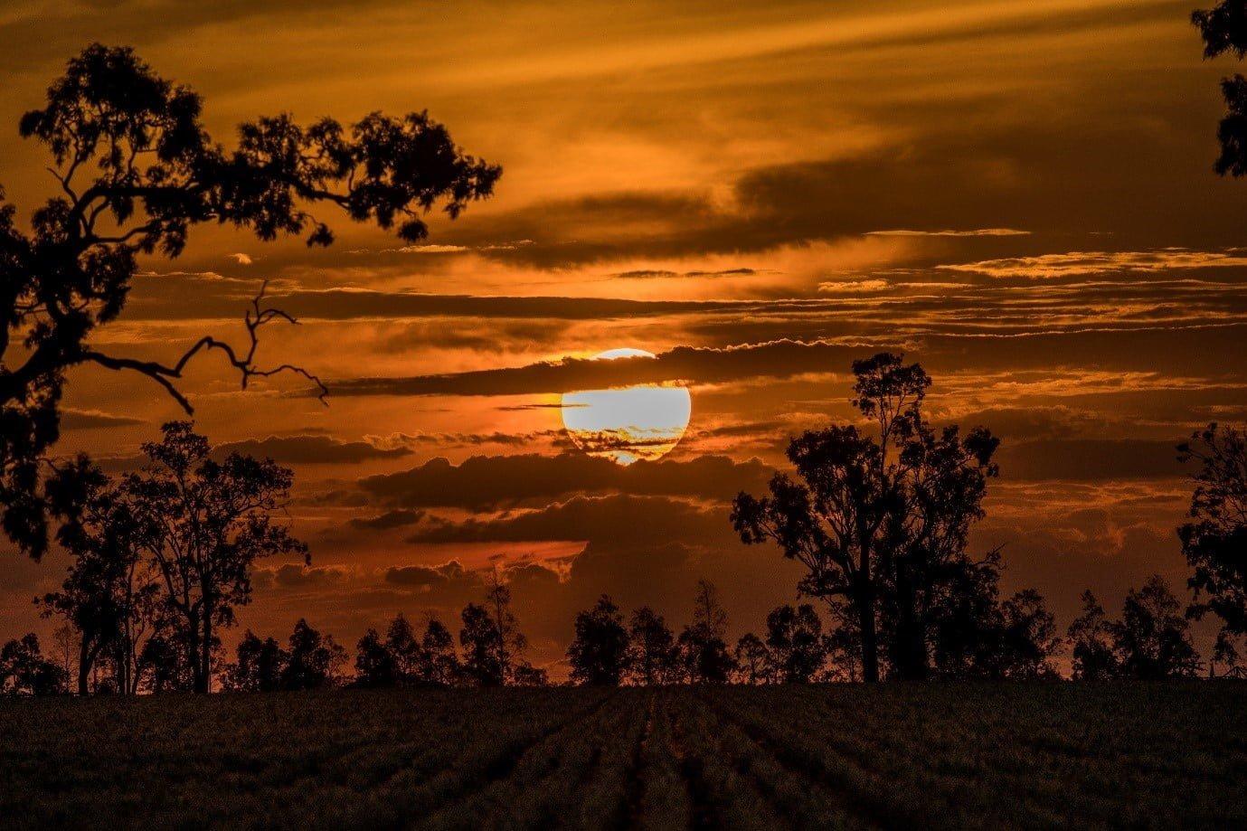Windorah Sunset